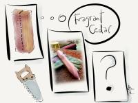 Fragrant Cedar